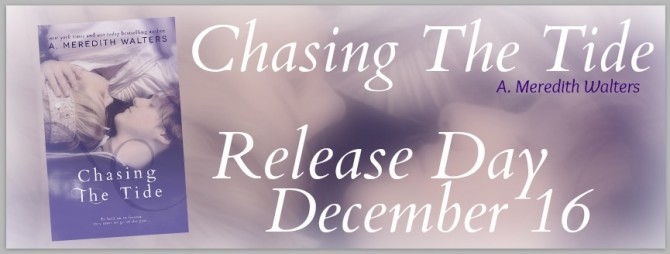Chasing The Tide Banner