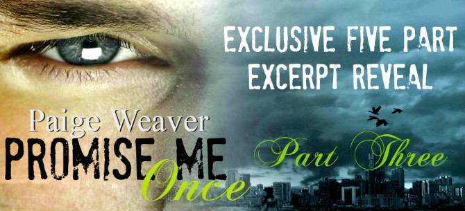 Promise Me Once Excerpt Reveal